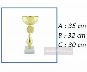 ödül kupa